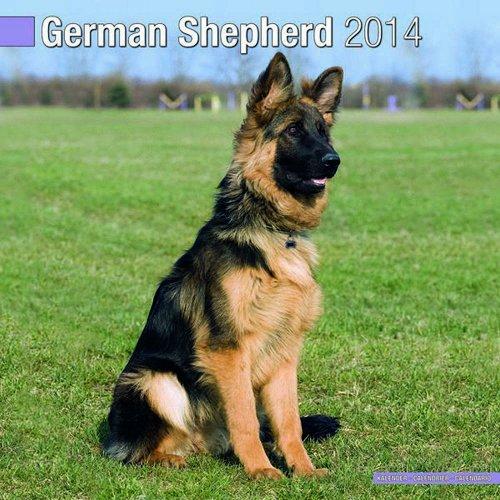 German Shepherd 2014 Wall Calendar