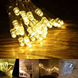 INST 30 Led Battery String Lights for Wedding - Christmas - Parties - etc.(Warm White)