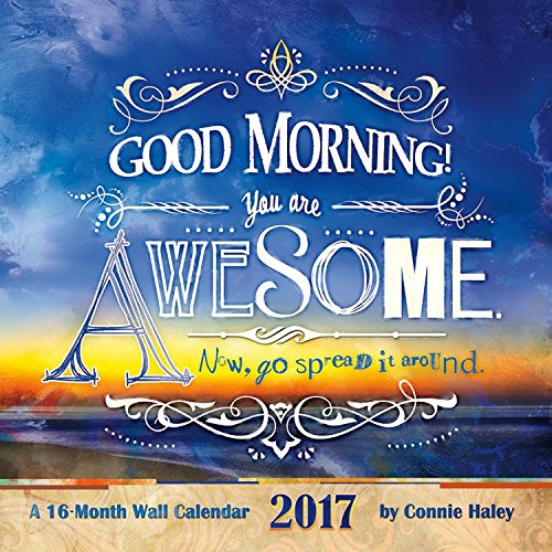 2017 Say What? - GOOD MORNING YOU ARE AWESOME - CONNIE HALEY Calendar - 12 x 12 Wall Calendar (Good Morning Calendar compare prices)