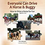 Everyone Can Drive a Horse and Buggy: How to Drive a Horse for Fun - Beginner Level
