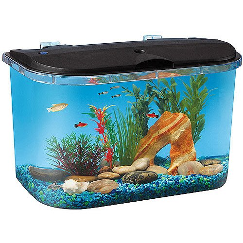 Hawkeye 5 Gallon Starter Aquarium Kit with LED Li (5 Gallon Fish Tank Starter Kit compare prices)