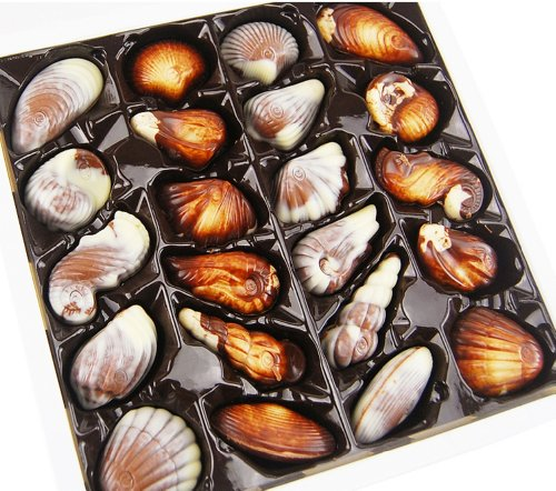 guylian-original-praline-seashells-chocolates-in-a-tin-500-g