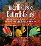 Angelfishes & Butterflyfishes: Plus ten more Aquarium fish families with expert Captive Care Advice for the Marine Aquarist (Reef Fishes Series Book 3)