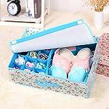 15 Organizer Underwear Closet Drawer Box Divider Sock Tie Bra Storage Case Cover