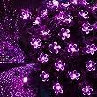 LE LED Solaire Lumi�re de Bande, �tanche, 50 LEDs, 5 m�tres, 1.2V, Violet, avec Capteur de Lumi�re, LED Lampe Ampoule �clairage Solaire, Id�al pour No�l , F�tes , Mariages