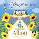 Wish You Were Here Audiobook by Catherine Alliott Narrated by Julia Franklin