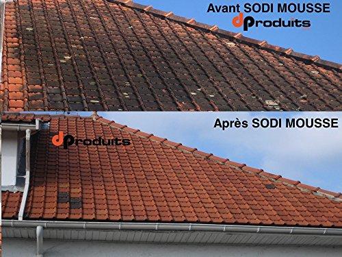 anti mousse concentr professionnel 5l toitures fa ades. Black Bedroom Furniture Sets. Home Design Ideas