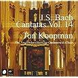 Bach: Complete Cantatas, Vol. 14