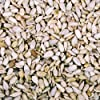 25 kg Dawn Chorus Sunflower Hearts For Wild Birds (12.5 kg x 2)