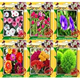Airex Vinca,Gomphrena Mixed,Morning Glory,Zinnia,Cockscomb,Kochia Seeds ( Pack Of 25 Seeds Per Packet)