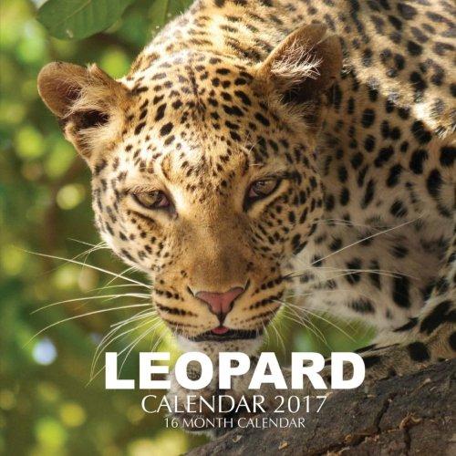 Leopard Calendar 2017: 16 Month Calendar