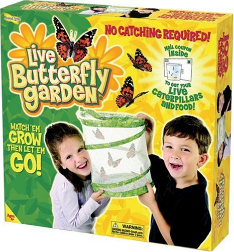 Baby's Store |   Insect Lore Live Butterfly Garden :  garden live insect butterfly
