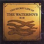 1981-1985 Secret Life Of