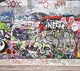 Brewster Phoenix Graffiti Pre-Pasted Wall Mural, 8-Foot x 9-Foot