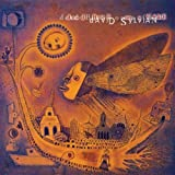 Dead Bees On A Cake by David Sylvian (2011)