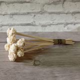 Devinez Premium Flower Shape Bleached Rattan Reed Sticks/ Refill Pack For Reed Diffuser, 8 Inches, 4mm (Cream...