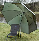 Bison - Brolly -