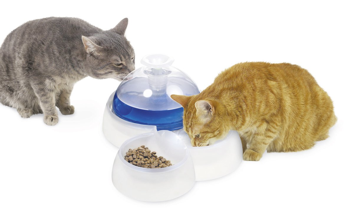 catit fresh and clear drinking fountain for cats and. Black Bedroom Furniture Sets. Home Design Ideas
