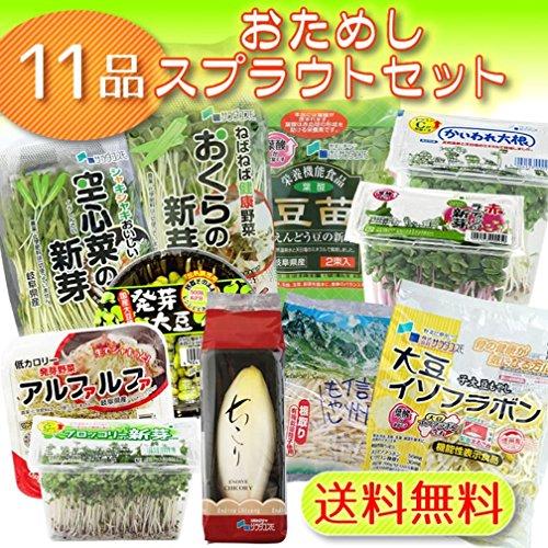 サラダコスモ おためし11品の発芽野菜セット 国産チコリ入り