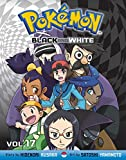 Pokémon Black and White, Vol. 17 (Pokemon)