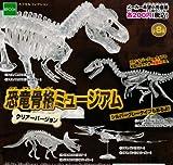 カプセル 恐竜骨格ミュージアム クリアーバージョン 全8種セット