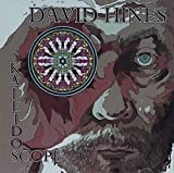 Kaleidoscope by David Hines