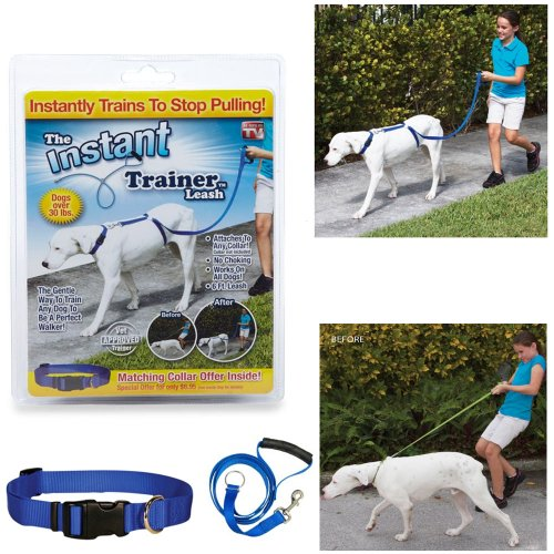 The Instant Trainer Leash Trains Dogs 30 Lbs Stop Pulling As Seen On Tv Dogewalk front-938091