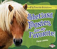 Shetland Ponies Are My Favorite! (My Favorite Horses)
