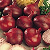 Biocarve Onion - Pack of 100 seeds