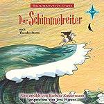 Der Schimmelreiter: Nach Theodor Storm (Weltliteratur für Kinder) | Barbara Kindermann