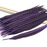 BLEVET 50PCS Nature Pheasant Feathers 30-35cm Pheasant Tail Feathers for Decoration BK003 (30-35cm, 50pcs Purple) (Color: 50pcs Purple, Tamaño: 30-35cm)
