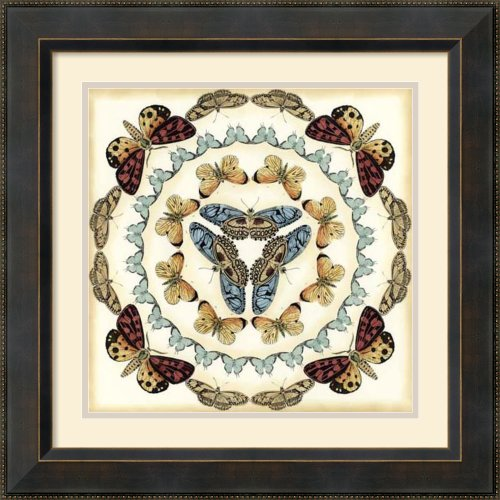 Butterfly Collector IV by Chariklia Zarris Framed