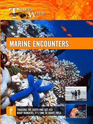travel-wild-marine-encounters-ov