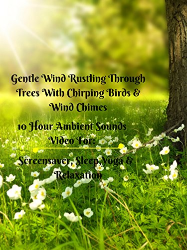 Gentle wind rustling through trees with wind chimes and chirping birds 10 hour ambient sounds video for screensaver sleep yoga and relaxation