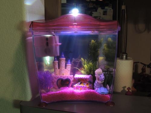 Amazon.com : Hagen Marina Mermaid Goldfish Kit : Aquarium Starter Kits : Pet Supplies