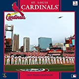 Turner Perfect Timing 2015 St Louis Cardinals Team Wall Calendar, 12 x 12 Inches (8011651)