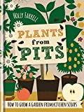 Plants from Pits: Pots of plants for the whole family to enjoy
