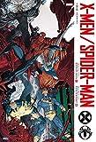 X-MEN/スパイダーマン / クリストス・ゲージ のシリーズ情報を見る