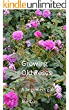 GROWING OLD ROSES: A beginners Guide (English Edition)