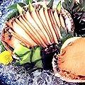 山梨 あわび 煮貝 ギフト 甲州名産あわびの煮貝、高級贈答品鮑、老舗かいやのアワビの煮貝2粒