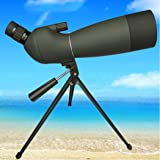High Power & HD Monocular Telescope, Zoom Monocular Telescope, Night Vision with Tripod, Perfect for Bird Watching Hiking Concerts,25~75 70 cxjff (Size : 20~6060)