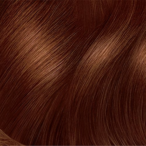 Clairol Nice 'n Easy, 4R/112 Natural Dark Auburn ...