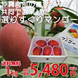 沖縄南部の農家さんが共同で選果した選りすぐりマンゴー 1kg ランキングお取り寄せ