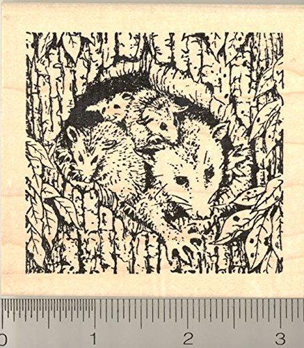 Opossum Family Rubber Stamp, Possums, North American Marsupials