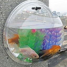 LING\'S SHOP Home Decoration Pot Wall Hanging Mount Bubble Aquarium Bowl Fish Tank Aquarium (Mirror, 26*26cm)