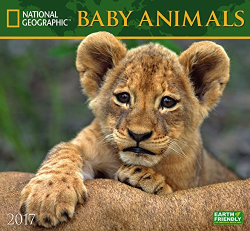 National Geographic Baby Animals 2017 Wall Calendar