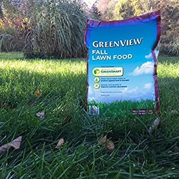 GreenView Fall Lawn Food - 16 lb. bag, Covers 5,000 sq. ft