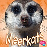 img - for Meerkats book / textbook / text book