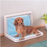 アイリスオーヤマ 折りたたみ犬トイレIT-500かすみベージュ