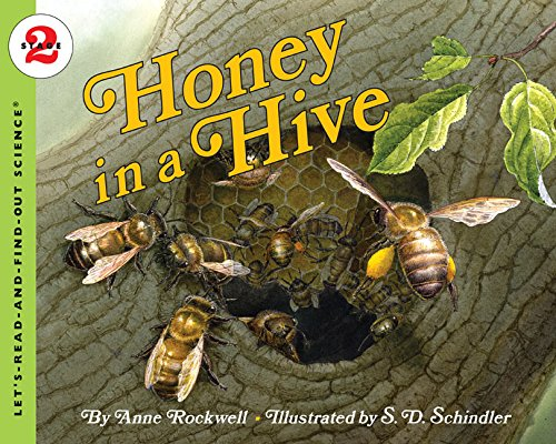 Honey in a Hive (Let's-Read-and-Find-Out Science 2) PDF